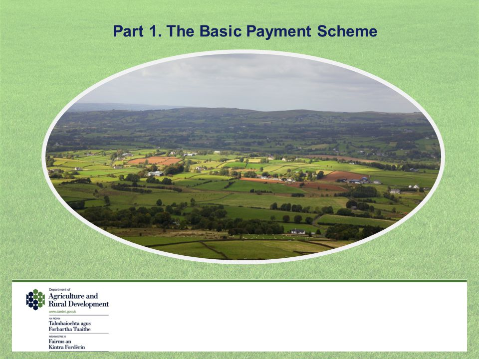 Part 1. The Basic Payment Scheme