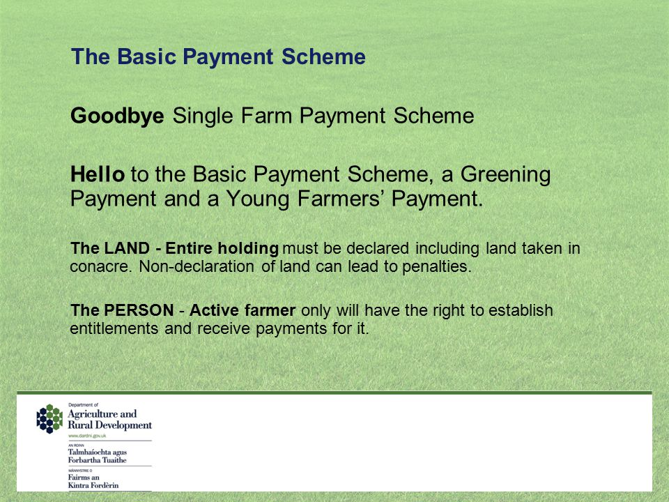 The Basic Payment Scheme