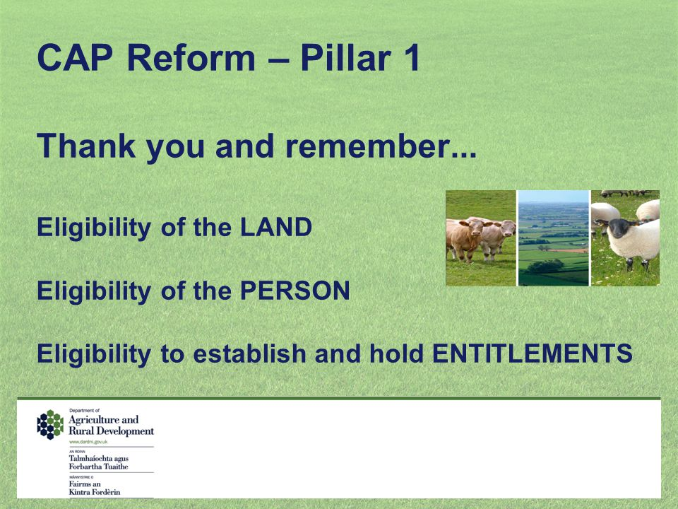 CAP Reform – Pillar 1 Thank you and remember