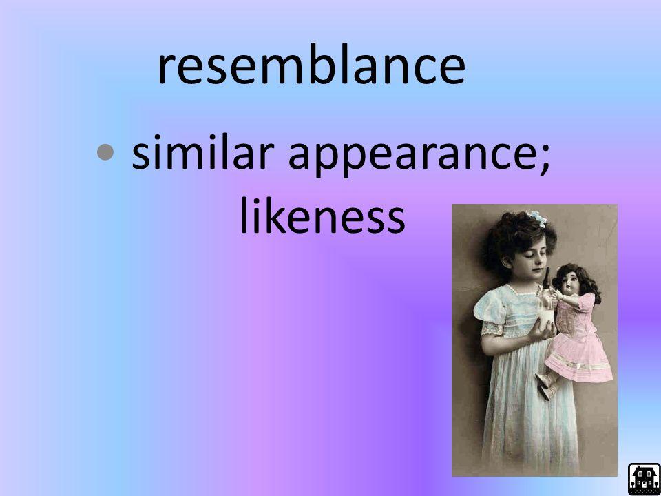 similar appearance; likeness