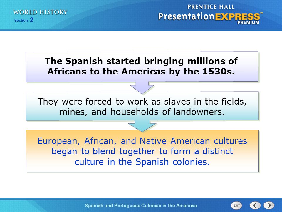 The Spanish started bringing millions of Africans to the Americas by the 1530s.