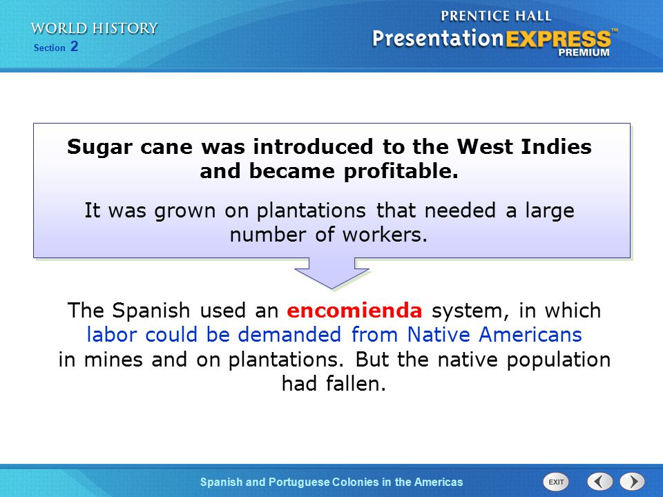 Sugar cane was introduced to the West Indies and became profitable.