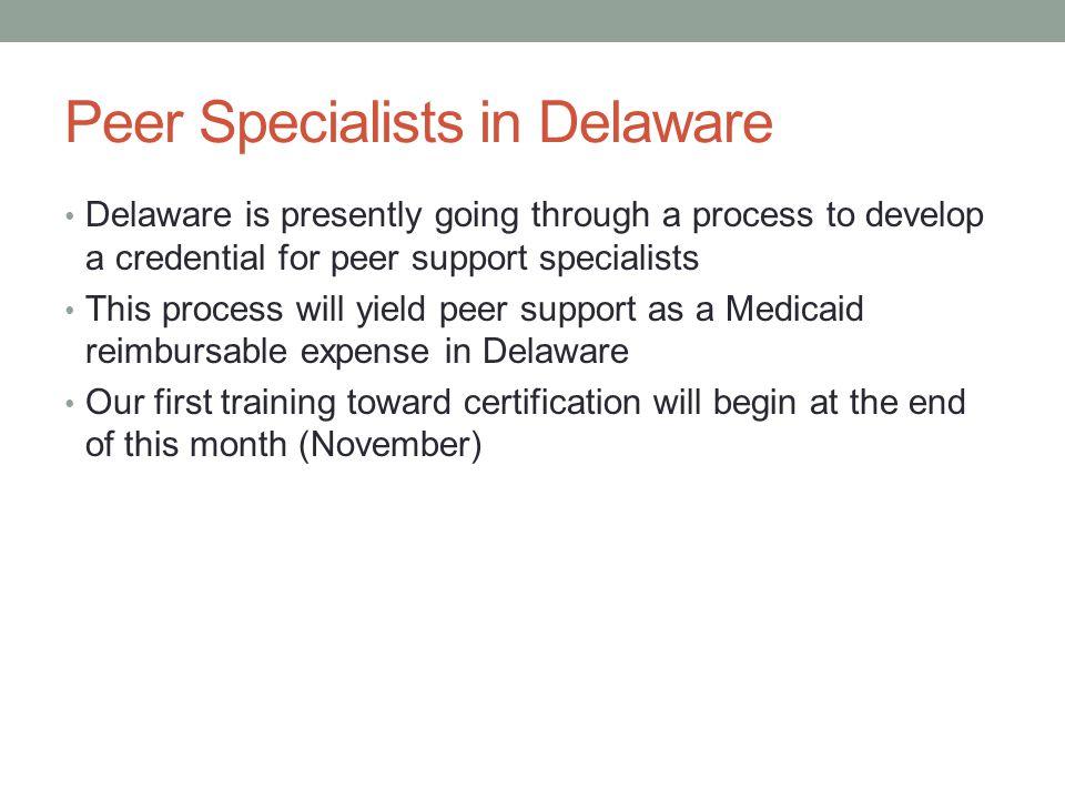 Peer Specialists in Delaware
