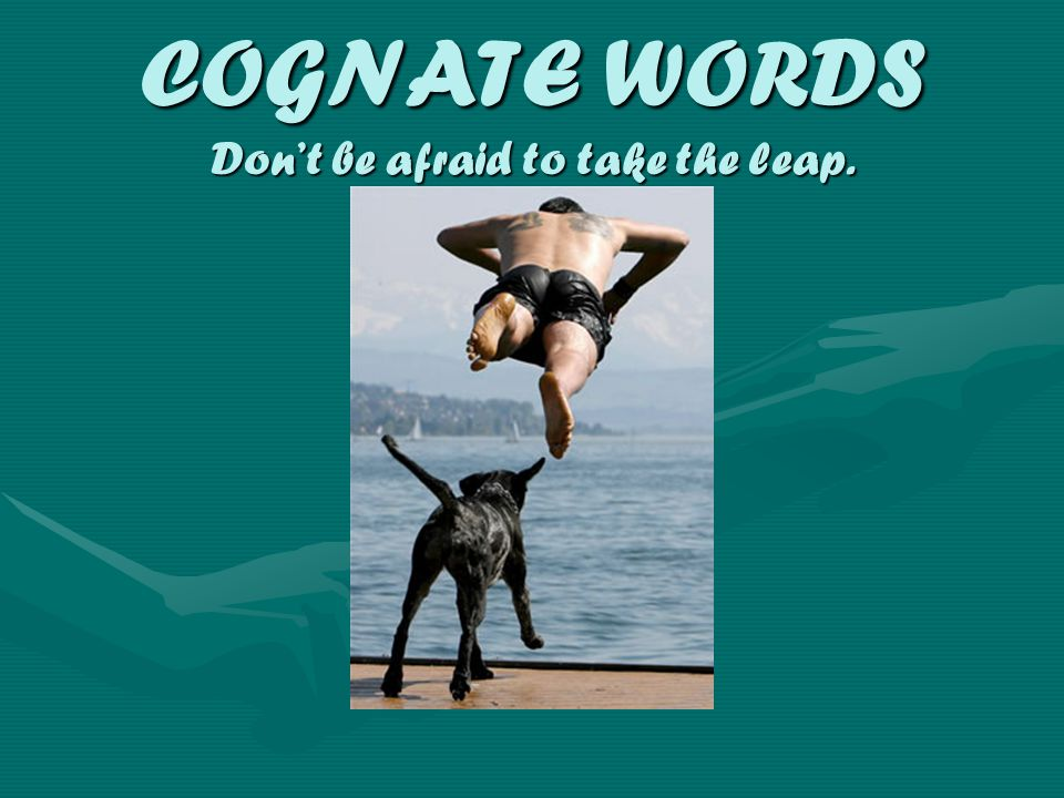 COGNATE WORDS Don't be afraid to take the leap.