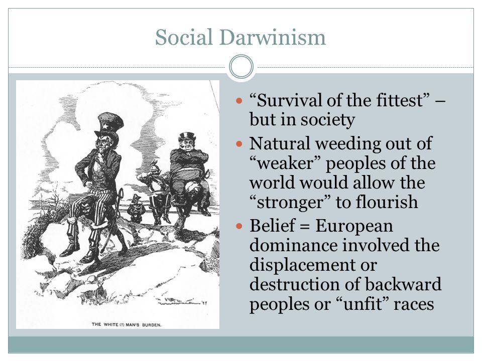 Social Darwinism Survival of the fittest – but in society