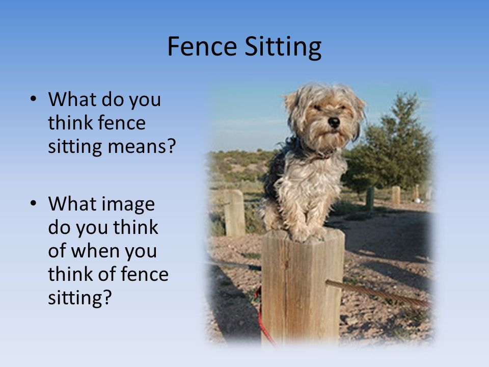 Fence Sitting What do you think fence sitting means