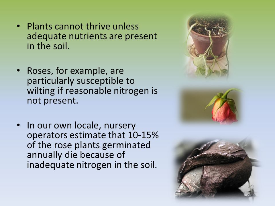 Persuasive unit ppt download for Minerals present in soil
