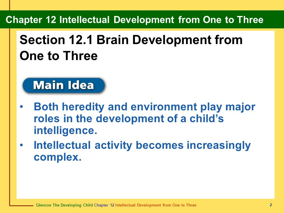 Section 12.1 Brain Development from One to Three