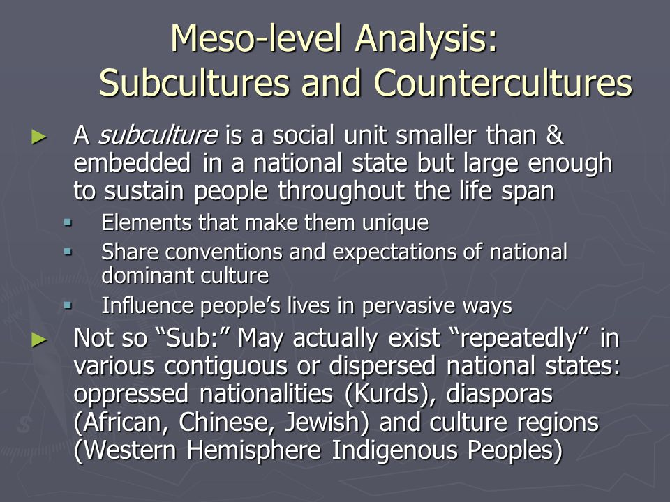 Meso-level Analysis: Subcultures and Countercultures