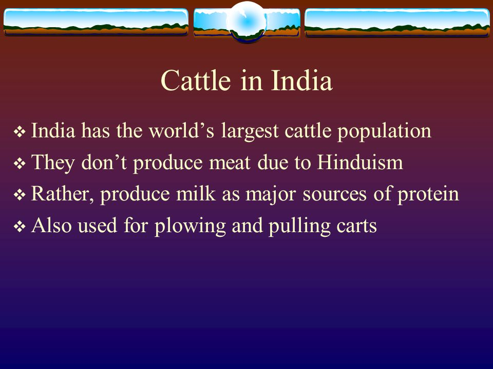 Cattle in India India has the world's largest cattle population