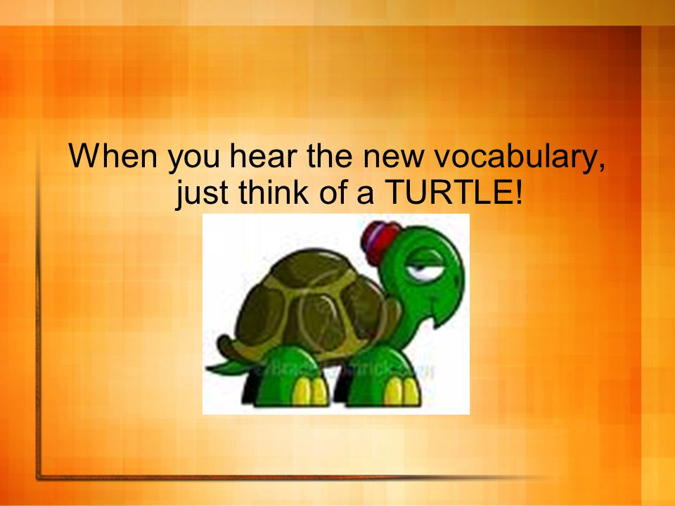 When you hear the new vocabulary, just think of a TURTLE!