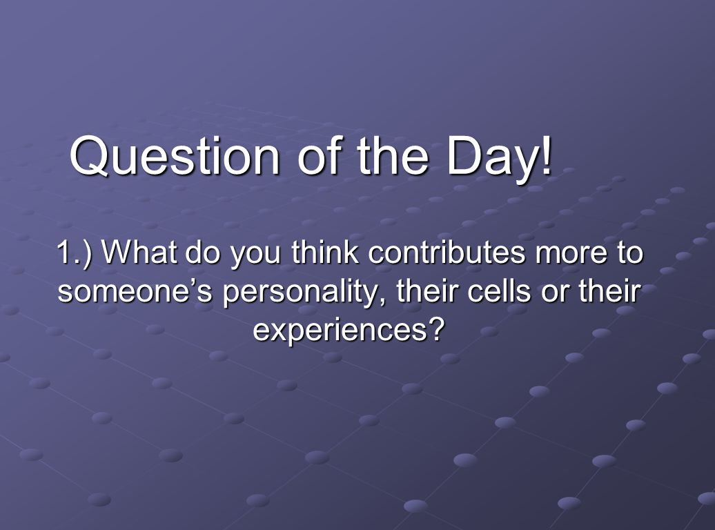 Question of the Day.