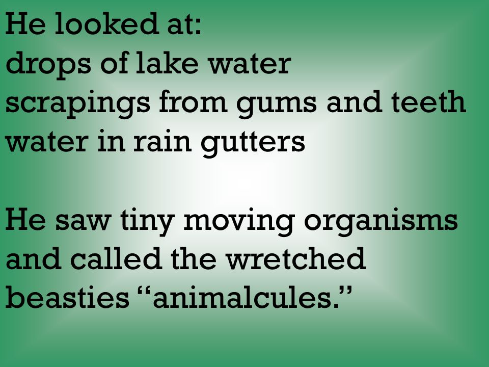He looked at: drops of lake water. scrapings from gums and teeth. water in rain gutters. He saw tiny moving organisms.