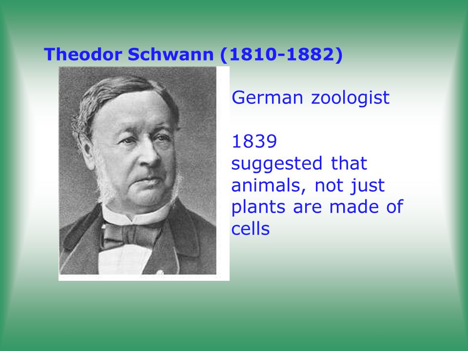 Theodor Schwann (1810-1882) German zoologist. 1839. suggested that
