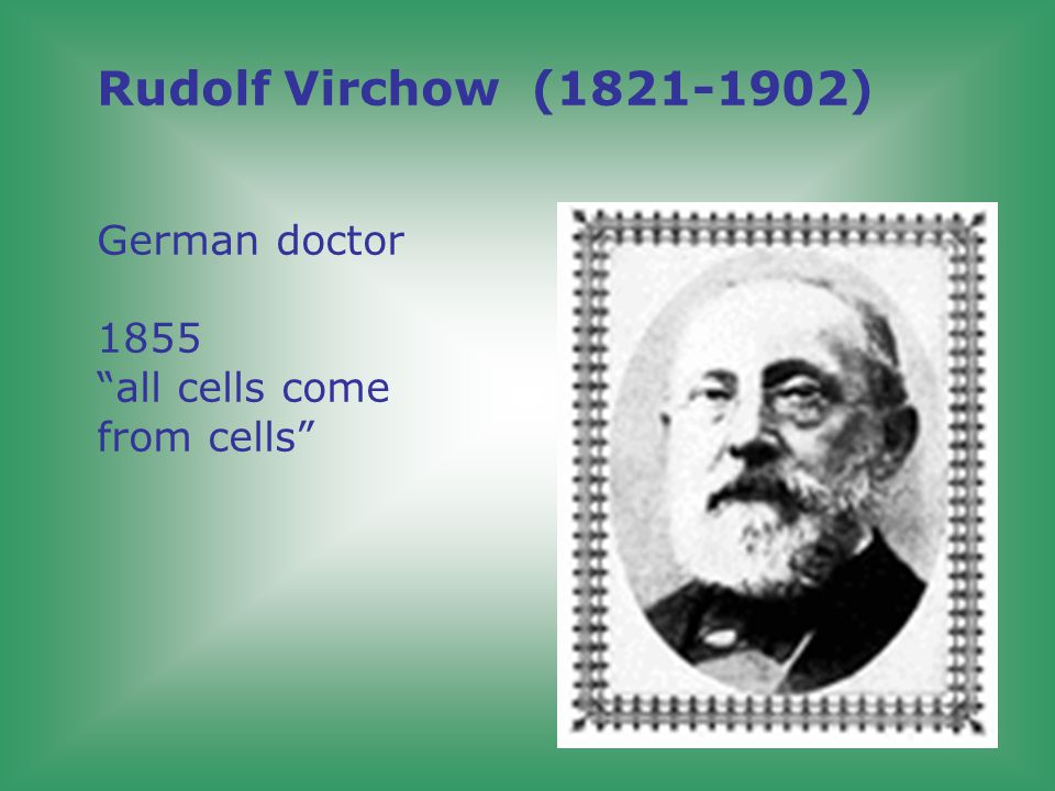 Rudolf Virchow (1821-1902) German doctor 1855 all cells come