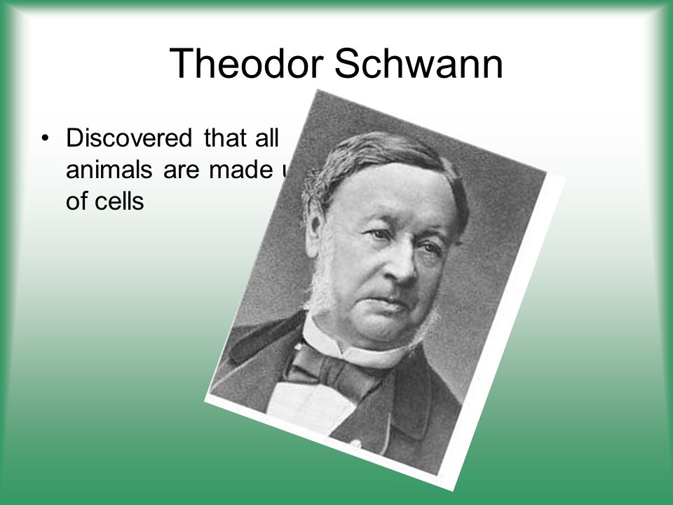 Theodor Schwann Discovered that all animals are made up of cells