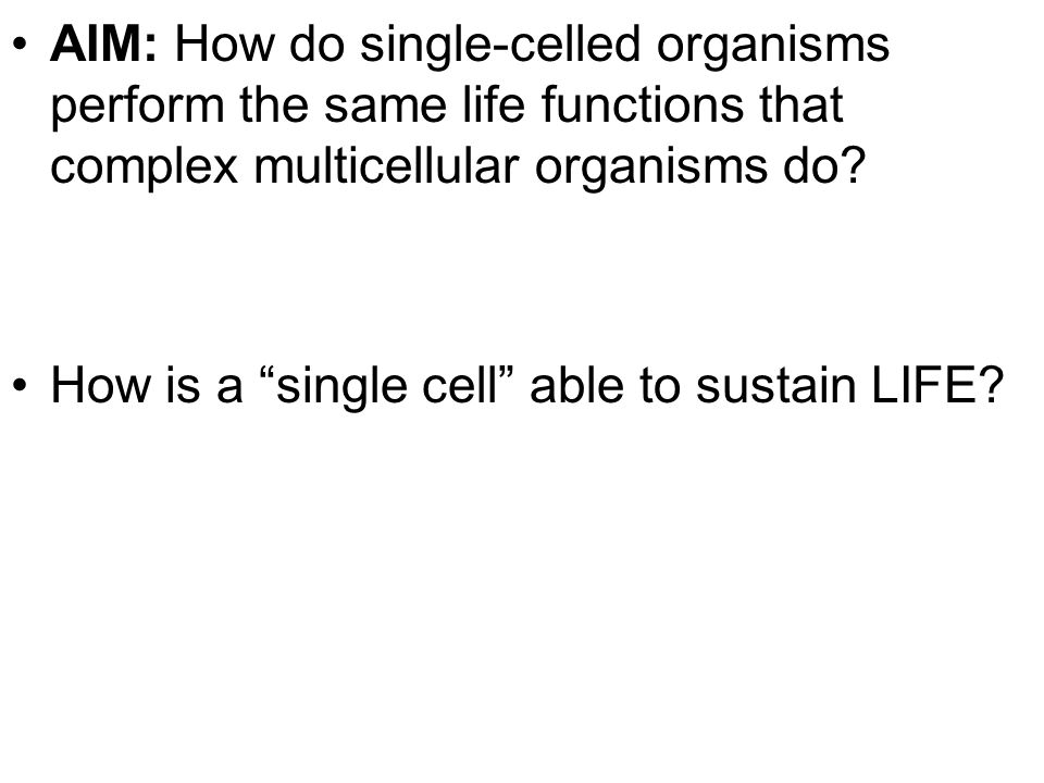 AIM: How do single-celled organisms perform the same life functions that complex multicellular organisms do