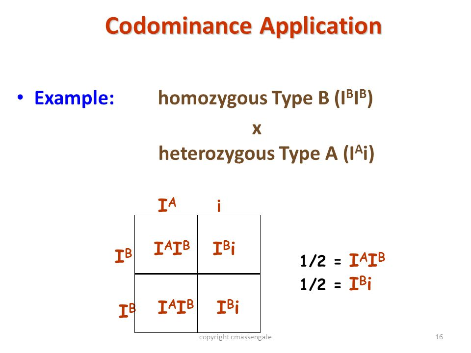 Codominance Application