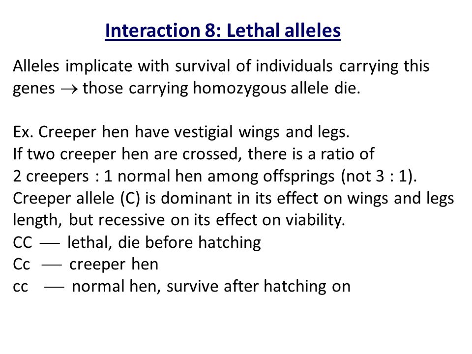 Interaction 8: Lethal alleles
