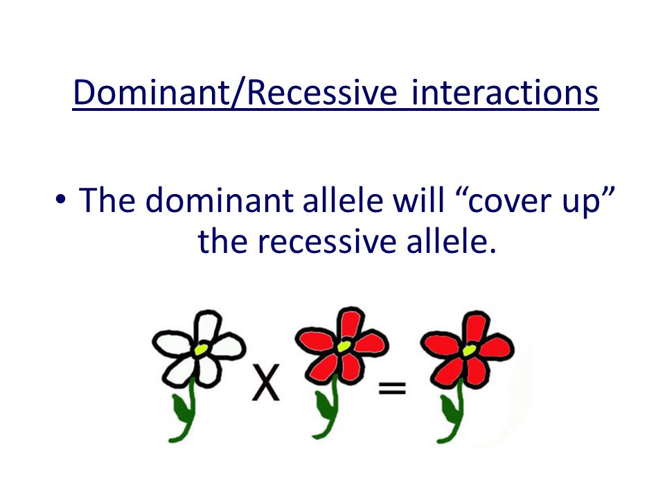 Dominant/Recessive interactions