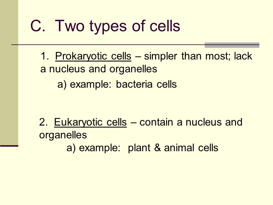 C. Two types of cells 1. Prokaryotic cells – simpler than most; lack a nucleus and organelles. a) example: bacteria cells.