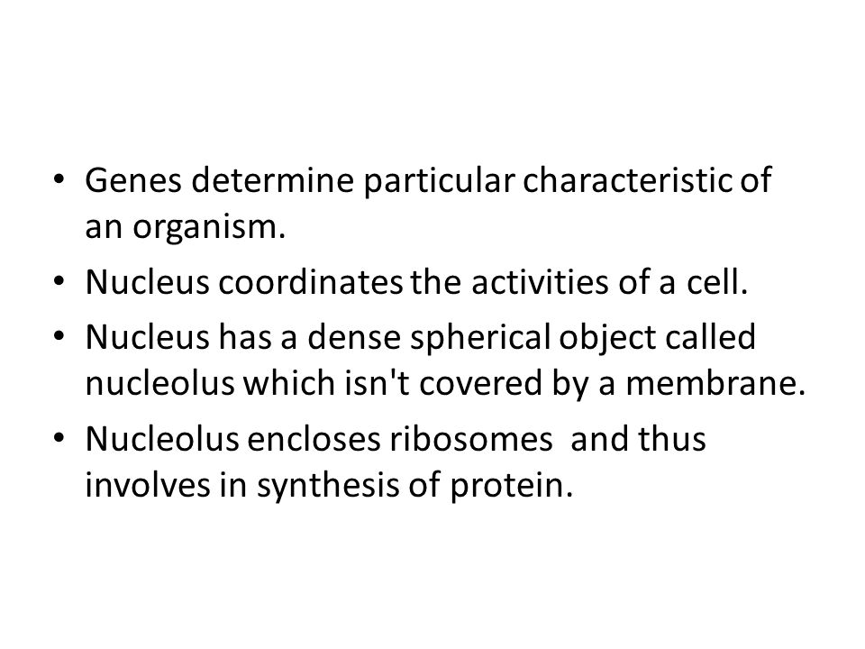 Genes determine particular characteristic of an organism.