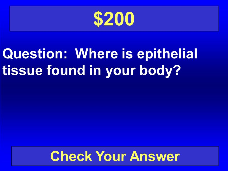 $200 Question: Where is epithelial tissue found in your body