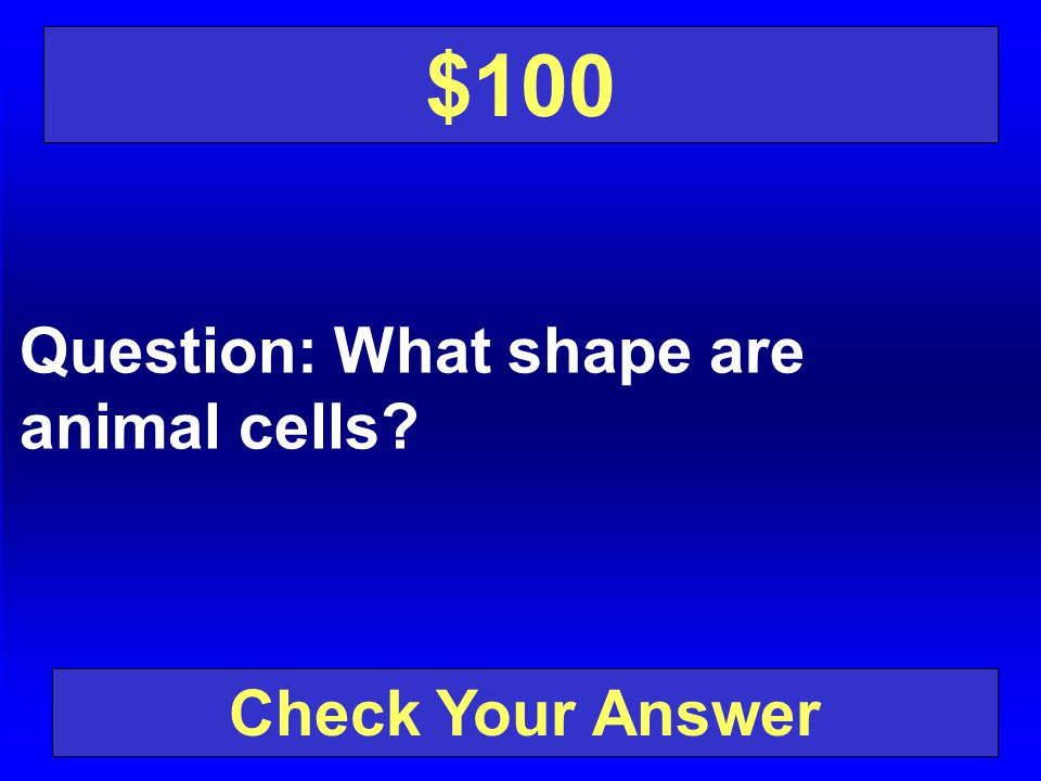 $100 Question: What shape are animal cells Check Your Answer