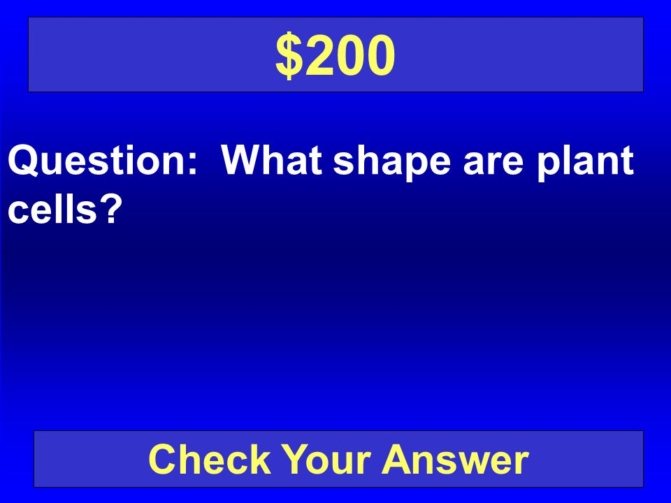 $200 Question: What shape are plant cells Check Your Answer