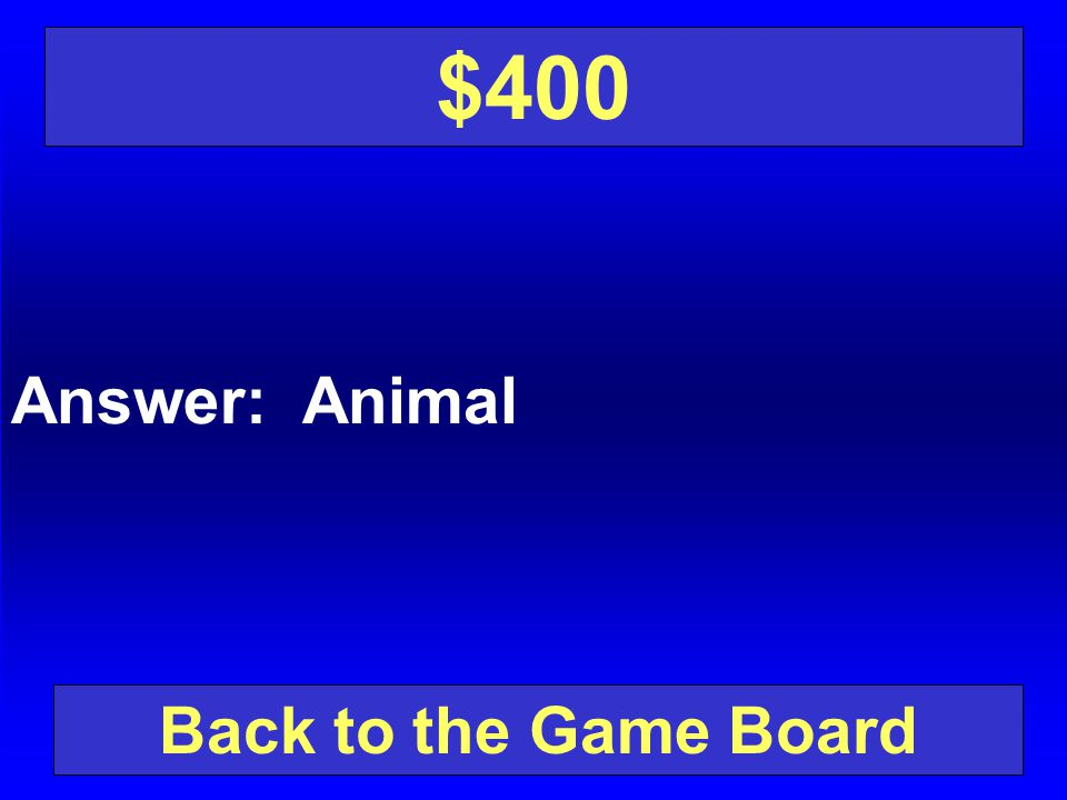 $400 Answer: Animal Back to the Game Board
