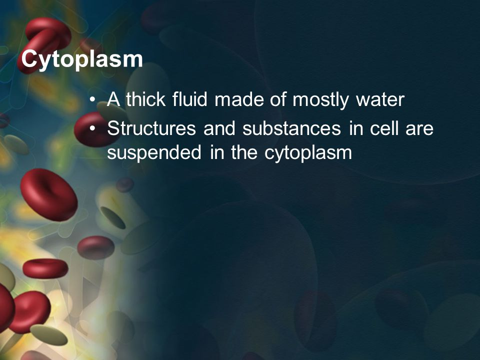 Cytoplasm A thick fluid made of mostly water