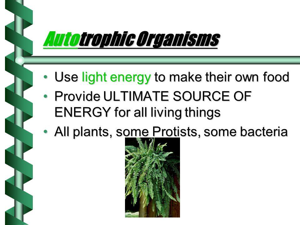 Autotrophic Organisms