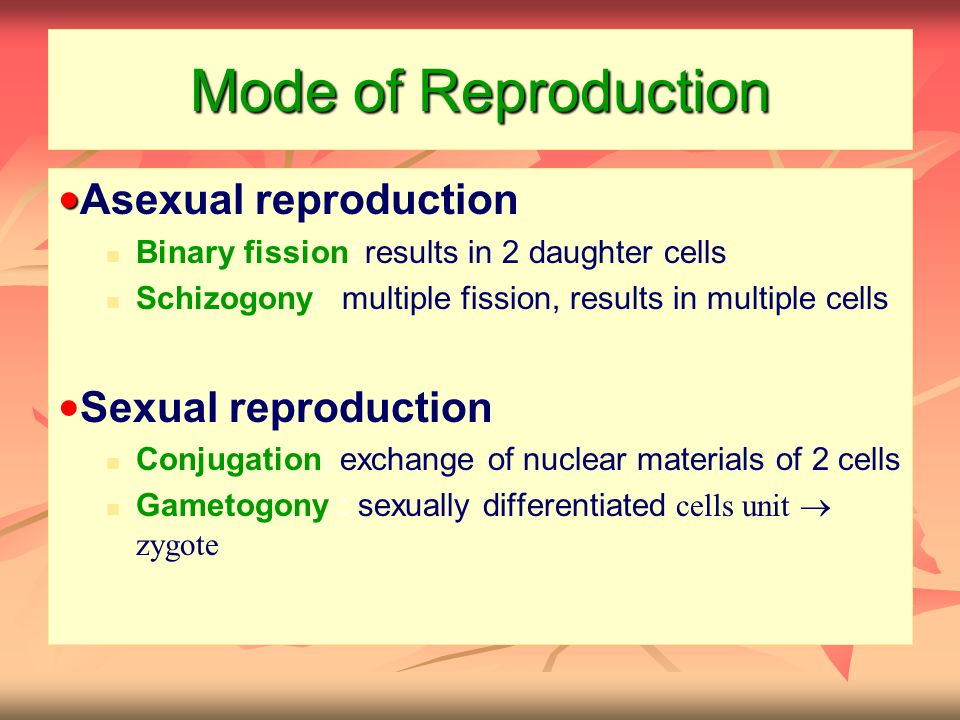 Mode of Reproduction ●Asexual reproduction ●Sexual reproduction