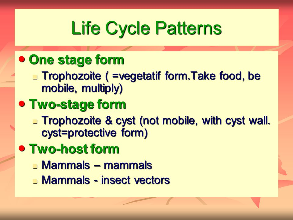 Life Cycle Patterns ● One stage form ● Two-stage form ● Two-host form