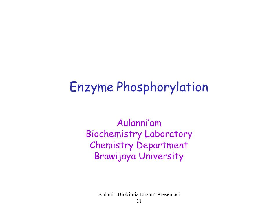 Enzyme Phosphorylation