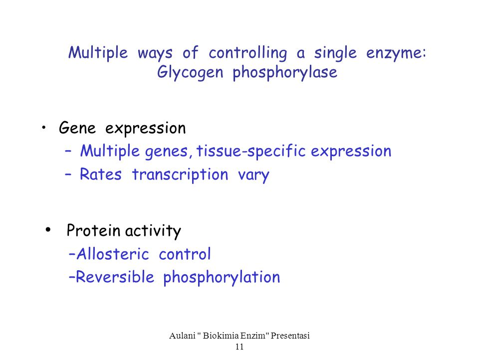 Multiple ways of controlling a single enzyme: Glycogen phosphorylase