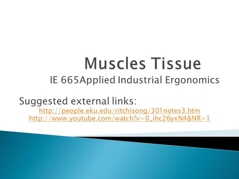 Muscles Tissue IE 665Applied Industrial Ergonomics