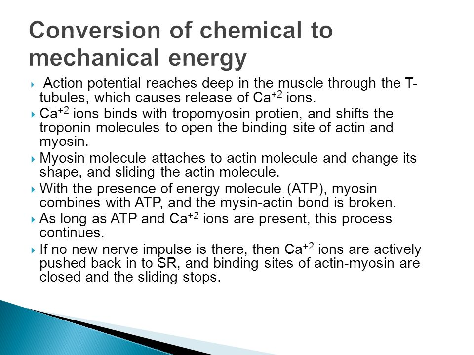 Conversion of chemical to mechanical energy