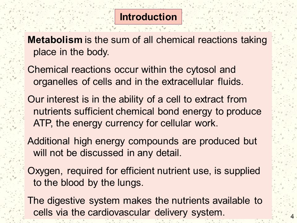 Introduction Metabolism is the sum of all chemical reactions taking place in the body.
