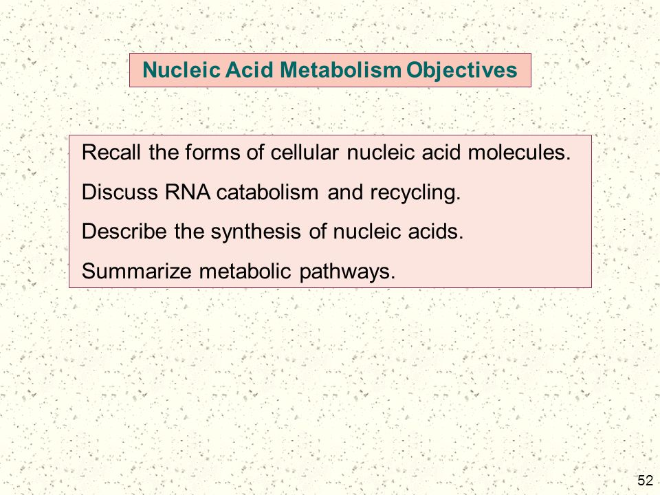Nucleic Acid Metabolism Objectives
