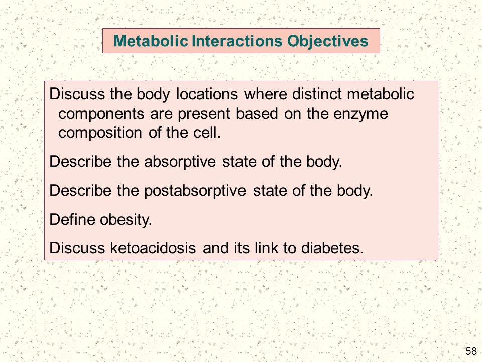 Metabolic Interactions Objectives