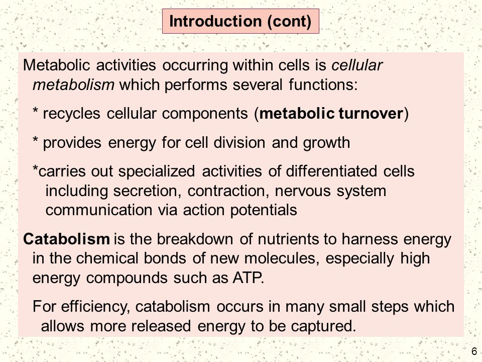 Introduction (cont) Metabolic activities occurring within cells is cellular metabolism which performs several functions: