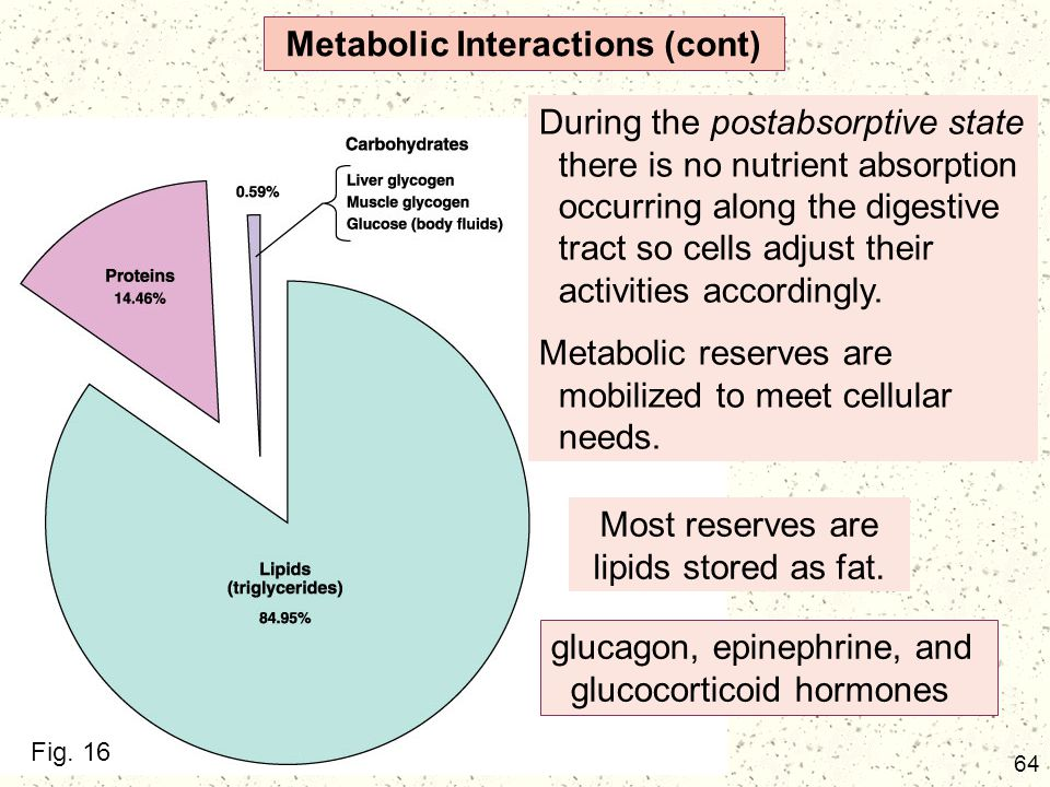 Metabolic Interactions (cont)