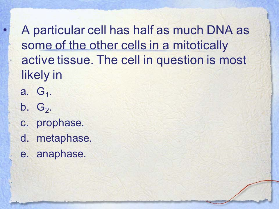 A particular cell has half as much DNA as some of the other cells in a mitotically active tissue. The cell in question is most likely in