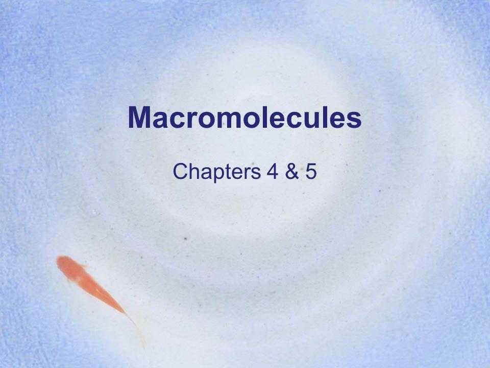 Macromolecules Chapters 4 & 5
