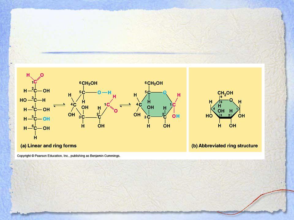 Monosaccharide monomer