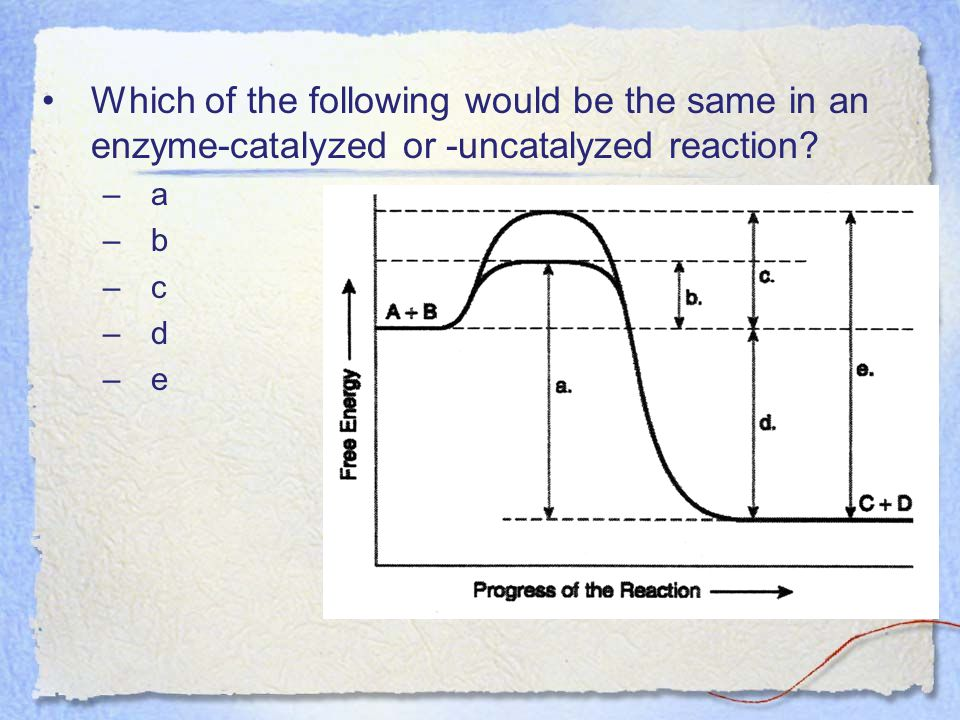 Which of the following would be the same in an enzyme-catalyzed or -uncatalyzed reaction a. b. c.