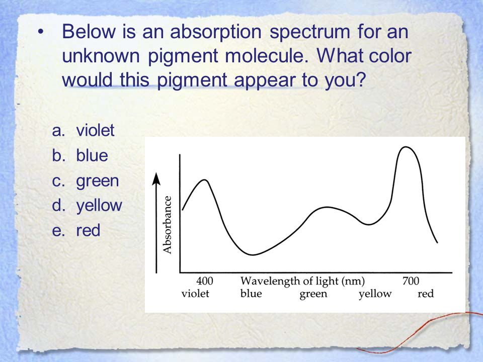 Below is an absorption spectrum for an unknown pigment molecule