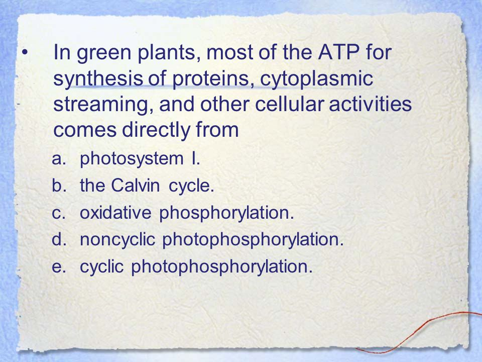 In green plants, most of the ATP for synthesis of proteins, cytoplasmic streaming, and other cellular activities comes directly from