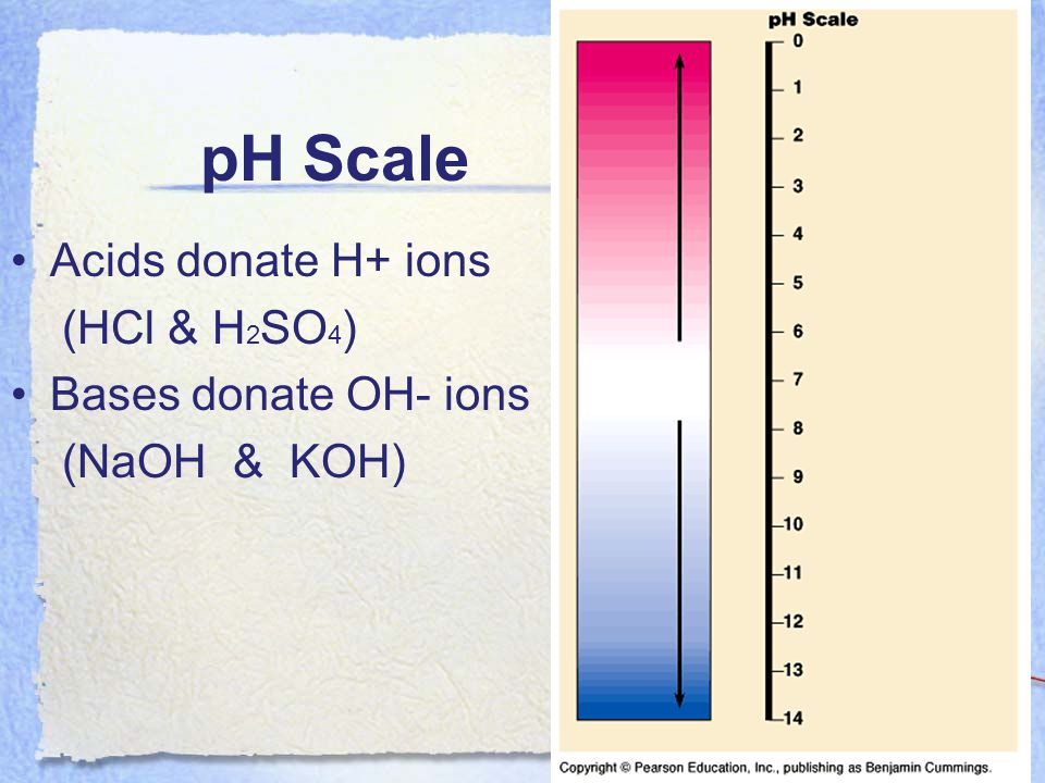 pH Scale Acids donate H+ ions (HCl & H2SO4) Bases donate OH- ions